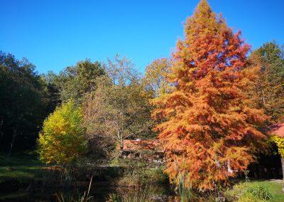 ÉletMagTárHáz ősz